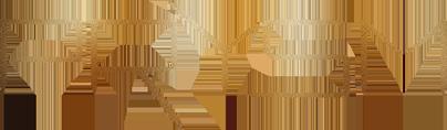 prysm_logo
